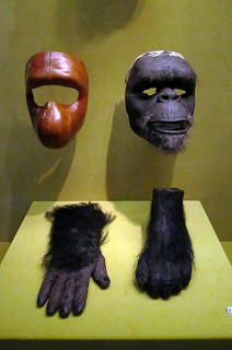 Ape masks, hand and foot from planet of the apes