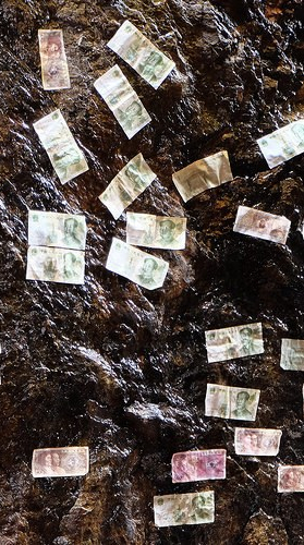 Chinese banknotes stuck to the wet spring of a well as donations to a temple.