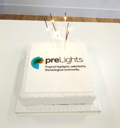 preLights 1st birthday cake! Photo from Mate Palfy.